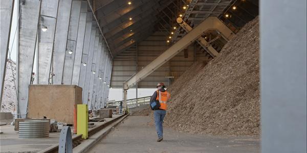 Plainfield, biomass plant